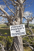 No Trespassing Prints - No Trespassing Sign Print by Bryan Mullennix