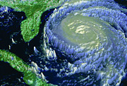 Noaa Prints - Noaa Satellite Image Of Hurricane Fran Print by NASA / Science Source