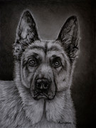 Michelle Wrighton Posters - Noble - German Shepherd Dog Poster by Michelle Wrighton