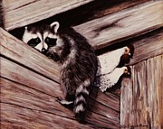 Raccoon Painting Framed Prints - Nobody Here But Us Chickens Framed Print by DiDi Higginbotham