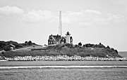 Vineyard Landscape Prints - Nobska Point Lighthouse Woods Hole Falmouth Massachusetts Print by Michelle Wiarda