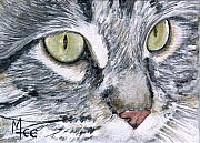 Cats Metal Prints - Noel Metal Print by Mary-Lee Sanders