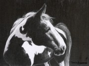 Horse Drawing Prints - Nograce Print by David Ackerson