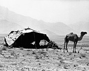 20st Century Prints - Nomadic Tents Can Be Seen Print by Everett