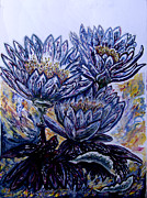 Floral Drawings - Noosa Everglades Waterlilies by Helen Duley