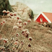 Norwegian Landscape Prints - Nordic summer Print by Sonya Kanelstrand