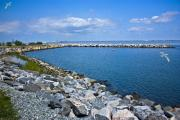 Military Base Photo Originals - Norfolk Marina by Joseph Williams