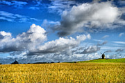 Campaign Photos - Norman countryside. by Matteo Zonta