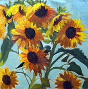 Golds Painting Posters - Normas Sunflowers Poster by Char Wood