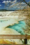 Yellowstone National Park Prints - Norris Hot Spring Print by Greg Norrell