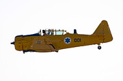 Single-engine Photo Prints - North American Aviation T-6 Texan  Print by Nir Ben-Yosef