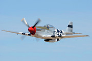 North American P-51 Mustang Framed Prints - North American P-51D Mustang NL5441V Spam Can Valle Arizona June 25 2011 1 Framed Print by Brian Lockett