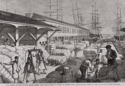 Slaves Prints - North Commercial Wharf Of Charleston Print by Everett