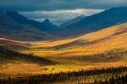 Without People Photos - North Klondike River Valley, Tombstone by John Sylvester