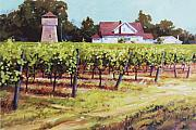 Napa Valley Vineyard Paintings - North of St. Helena by Ed Lucey