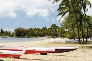 Ashore Framed Prints - North Shore, Haleiwa Framed Print by Vince Cavataio - Printscapes