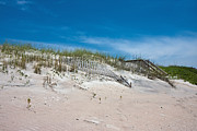Topsail Island Photos - North Topsail Dunes by East Coast Barrier Islands Betsy A Cutler