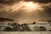 Winter Scenes Rural Scenes Prints - North Yorkshire, England Sun Shining Print by John Short