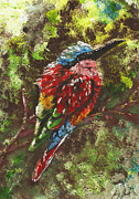 Semi Abstract Originals - Northern Carmine Bee Eater by Sydney Zmitrewicz