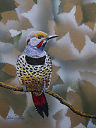 Alaska Paintings - Northern Flicker by Dee Carpenter