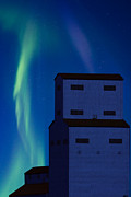 Nature Posters - Northern Lights and Grain Elevator 2 Poster by Mark Duffy