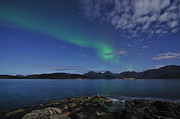Troms County Prints - Northern Lights At Sommaroy Print by Bernt Olsen