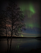 Northernlights Photos - Northern Lights by Ronald Lafleur