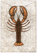 Red Ocean Mixed Media Posters - Northern Lobster Poster by Charles Harden