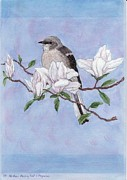 Mockingbird Paintings - Northern Mockingbird and Magnolias by Freda Gudopp