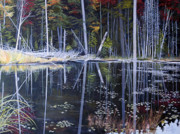 Dinny Madill - Northern Reflections