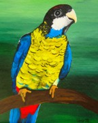 Parrot Paintings - Northern Rosella by Una  Miller
