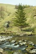 Hillsides Photos - Northumberland, England A River Flowing by John Short