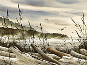 Seashore Painting Framed Prints - Northwest Shore Framed Print by James Williamson