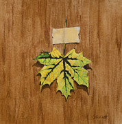 Leaf Pastels Originals - Norway Maple by Joanne Grant