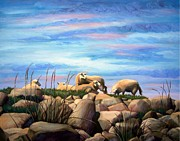 Sheep Grazing On Rocky Coast Prints - Norwegian Sheep Print by Janet King