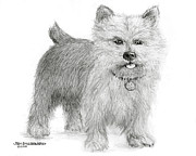 Jim Hubbard - Norwich Terrier