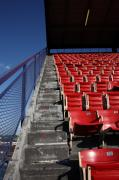 Stadium Seats Art - Nosebleeds by Frank Romeo