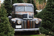 Domestic Trucks Acrylic Prints - Nostalgic Rusty Old Ford Truck . 7D10279 Acrylic Print by Wingsdomain Art and Photography