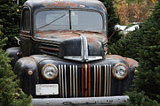 American Trucks Framed Prints - Nostalgic Rusty Old Ford Truck . 7D10280 Framed Print by Wingsdomain Art and Photography