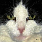 Tuxedo Cat Digital Art - Not Amused by Dale   Ford