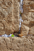Israeli Art - Notes In Wall Cracks by Noam Armonn