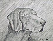 Working Dogs Originals - Nothin but a Hound Dog by Alan Hogan