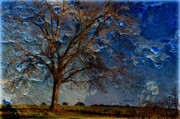 Country Scenes Metal Prints - Nothing But Blue Skies Metal Print by Jan Amiss Photography