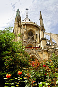 Flower Gardens Prints - Notre Dame de Paris Print by Elena Elisseeva