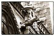 Gargoyles Framed Prints - Notre Dame Protection Framed Print by John Rizzuto