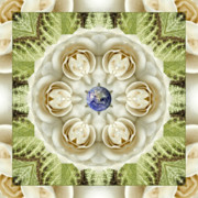 Mandala Photos - Novia Blanca by Bell And Todd