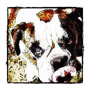 Pets Art Digital Art - Now That Was Yummy by Terry Mulligan
