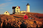 Maine Lighthouses Framed Prints - Nubble Light Sunset Framed Print by Catherine Reusch  Daley