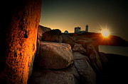 Nubble Lighthouse Prints - Nubble Seagull Print by Emily Stauring