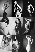 Nudes Photo Acrylic Prints - Nude BW Collage  Acrylic Print by Falko Follert